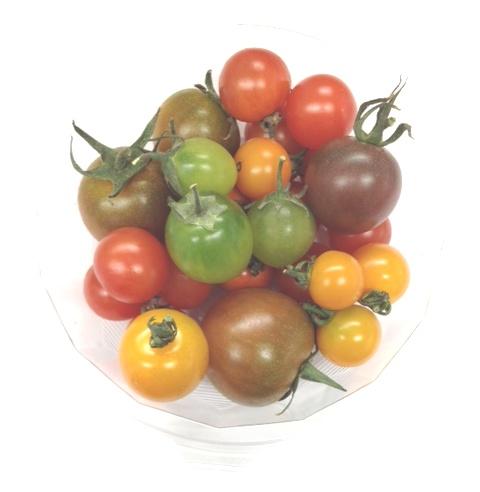 カラフルミニトマト.JPG