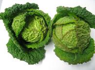 冬の旬野菜画像