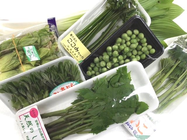 春野菜その1